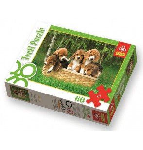 Puzzle Małe Beagle 17166